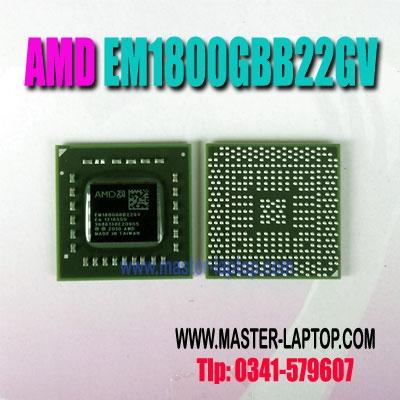 AMD EM1800GBB22GV  large2