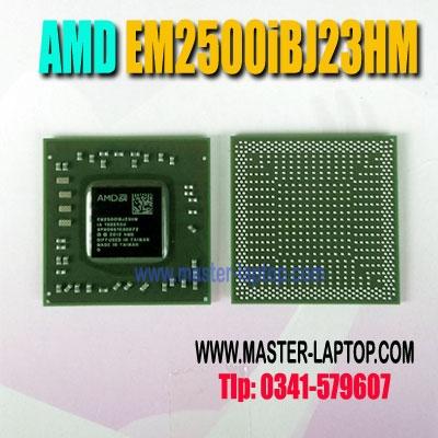 AMD EM2500iBJ23HM  large2