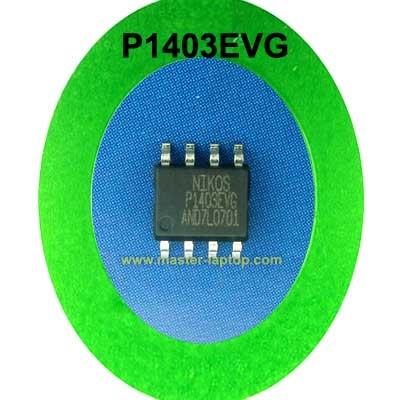 P1403EVG  large2