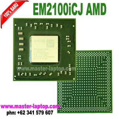 large2 EM2100iCJ AMD